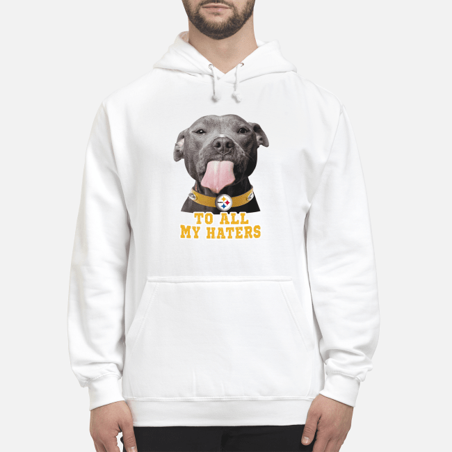 Official Pitbull Dallas Cowboys to all my haters Hoodie
